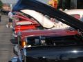 Fall Grand Rod Run 2012 019.jpg